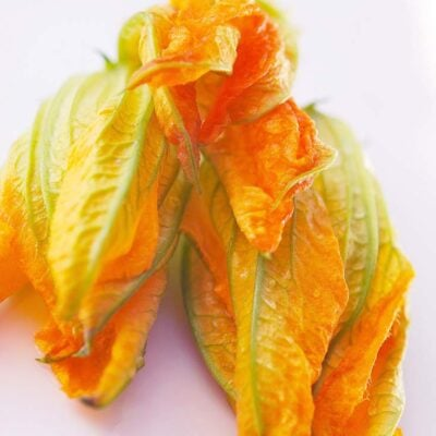 Squash Blossoms Recipe