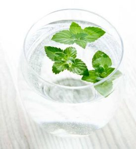 A glass of HomeMade MetroMint with fresh peppermint leaves floating in the top of the glass.