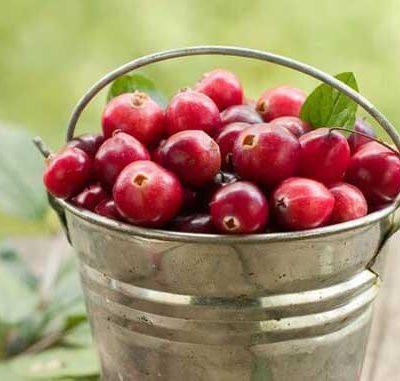 9 Ways To Eat Cranberries