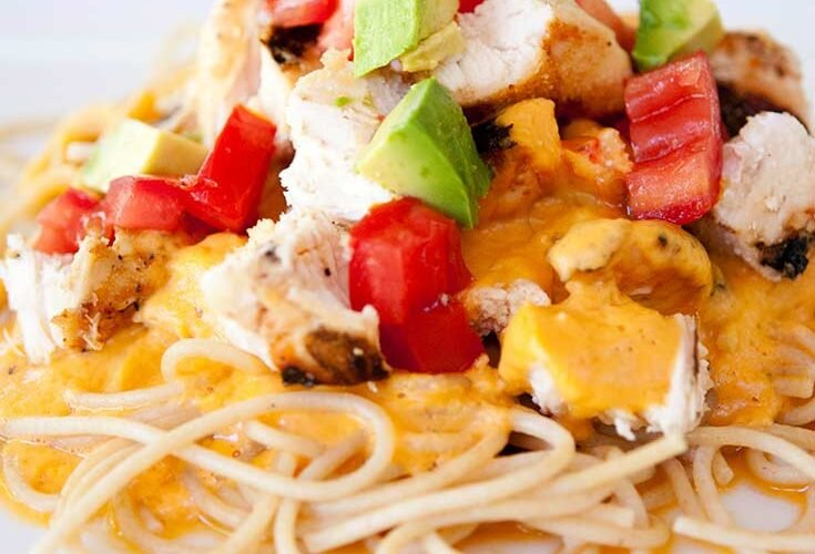 A plate of pasta piled high with whole grain noodles, plenty of cheesy alfredo sauce, delicious chunks of chicken and of course, some Tex Mex toppings like tomatoes and avocados. Yum!