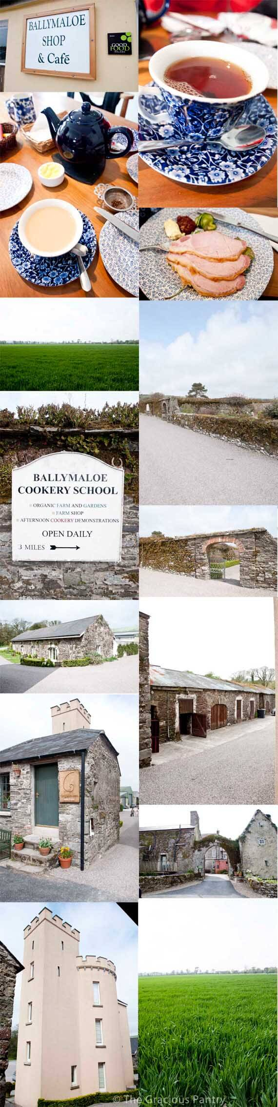 A photo collage of different areas of the grounds at the Ballymaloe Cooking School as well as a few images of the meal we had there.