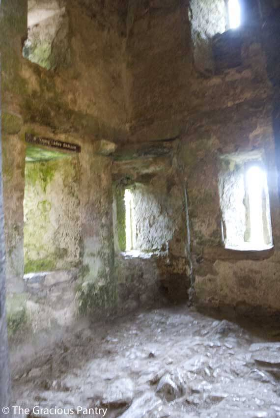 Image of Blarney Castle.