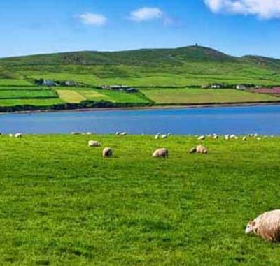 The Gracious Pantry Goes To Ireland