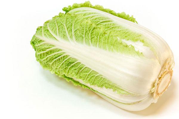 A head of Napa cabbage