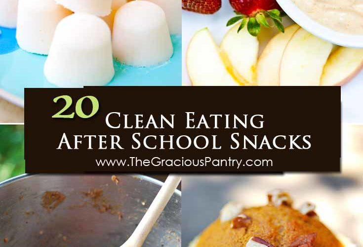 20 Clean Eating After School Snacks